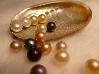 10 Twin Oysters With Pearls (Private Listing).~STOCKING STUFFER!!!