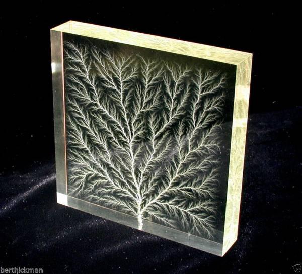 "Buy Best 4x4"" ""Captured Lightning"" Lichtenberg Figure Electron Tree acrylic art sculpture"