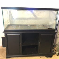 Buy Best 75 gallon aquarium