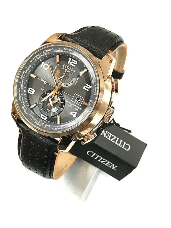 Citizen World Time Rose Gold Men's Watch AT9013-03H ***NEW***