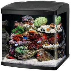 Buy Best Coralife Size 32 LED BioCube Aquarium - NEW UPGRADED MODEL