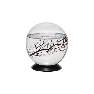EcoSphere® Sphere With Turntable Base Aquarium - M