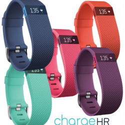 Buy Best Fitbit Charge HR Activity Fitness Tracker Heart Rate Wristband Watch 2 Sizes