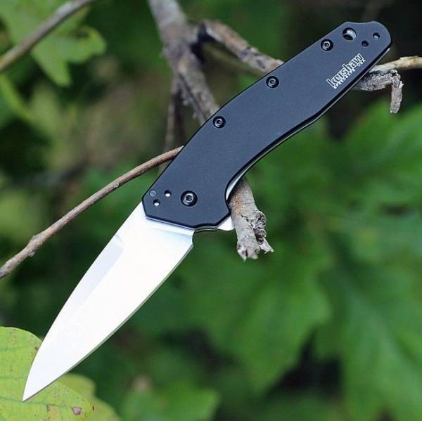 Buy Best M390 STEEL Limited-Edition Sprint Run - KERSHAW Dividend ASSISTED Knife 1812BLK