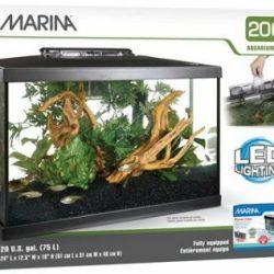 Marina LED Glass Aquarium Kit 20 Gallon