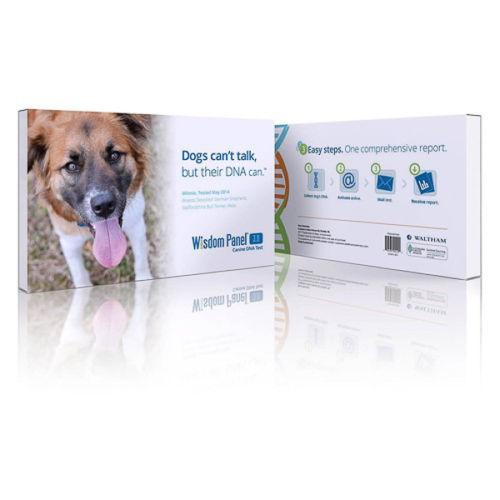 Buy Best Mars Veterinary Wisdom Panel 3.0 Canine DNA Test Dog Breed Identification ID Kit