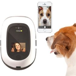 NEW PetChatz HD Pet Camera Two-Way Audio/Video System that Dispenses Treats