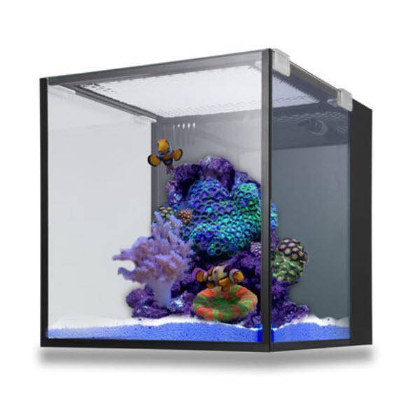 NUVO AQUARIUM - FUSION NANO 10 (TANK ONLY) - INNOVATIVE MARINE