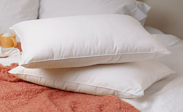 Buy Cheap New King Size Feather Goose Down Bed Pillow Set
