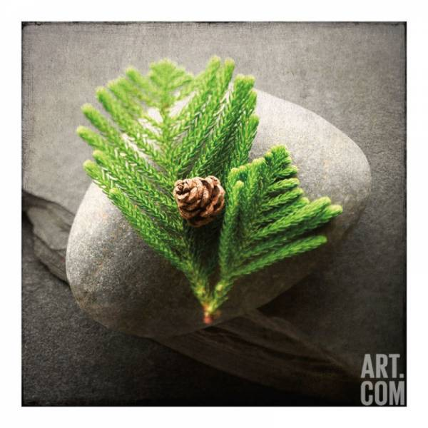 Pine Artists Giclee Poster Print by Glen and Gayle Wans, 36x36