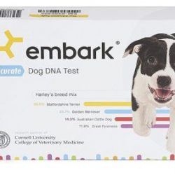 Buy Best @WAGS-DNA Embark Dog DNA Test Breed ID Genetic 160 Health Results