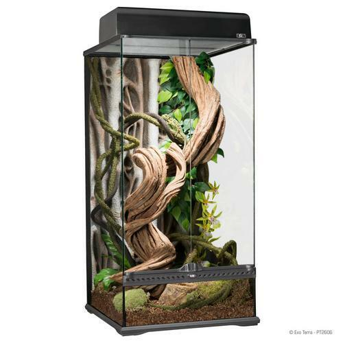 "Exo Terra Natural Glass Terrarium Small X Tall 18"" x 18"" x 36"""
