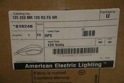 American Electric Lighting Street Light 818248 200W 125 20S MR 120 R3 FG NR HPS